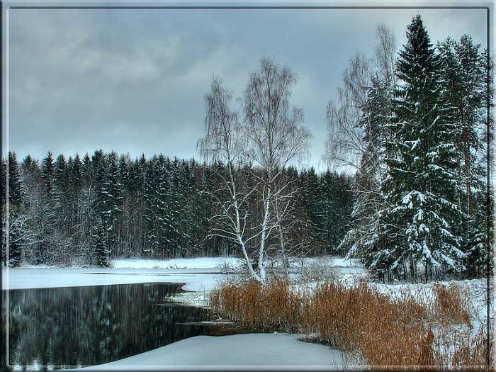 Пейзаж: ноябрь под снегом